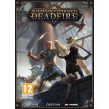 Pillars of Eternity II Deadfire (PC) Játékprogram