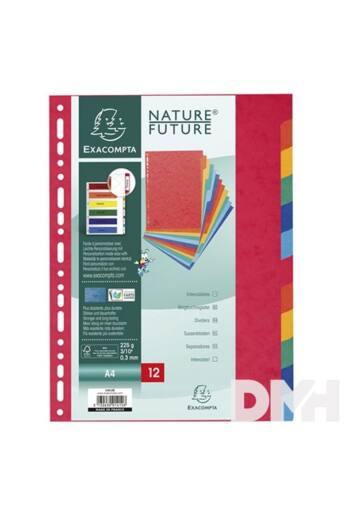 Exacompta A4 12 részes karton színes elválasztólap